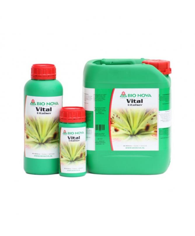 Bio Nova Vital 250 ml