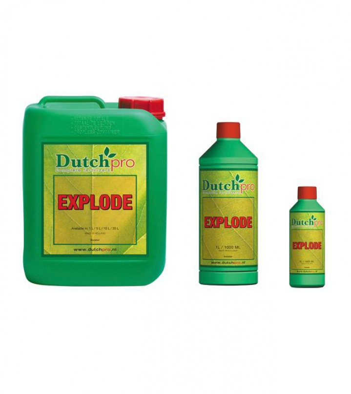 Dutch Pro Explode 250ml