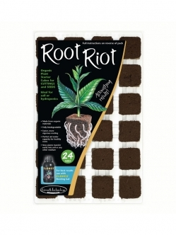 Root Riot 24