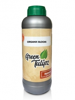 Green Tulipz Organic-Bloom