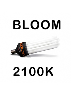 Advanced Star PRO STAR CFL AGRO(BLOOM) 2100K