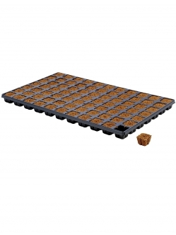 Eazy Plug Porpagation cubes in tray
